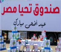 صندوق تحيا مصر يوفر قوافل للأسر الأولى بالرعاية استعدادا لـ«عيد الأضحى»