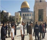 100 مستوطن إسرائيلي يقتحمون المسجد الأقصى