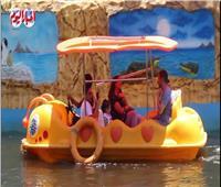 ملاهي مائية ولعب أطفال.. استعدادات حديقة الحيوان لاستقبال الزوار| فيديو