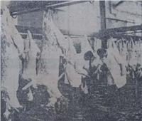في عيد الأضحى.. أقدم طريقة مصرية لاكتشاف اللحوم المغشوشة