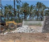 حملات العيد| إزالة 4 حالات تعدي على الأراضى الزراعية بالبحيرة
