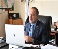 وزارة التخطيط والتنمية الاقتصادية تشارك فى «يوم أفريقيا» السنوي