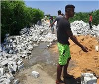 استمرار إزالة التعديات على الأرض الزراعية بـ«السنطة» في الغربية