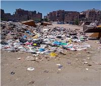 خلال أيام العيد.. حملات نظافة موسعة في الصف بالجيزة