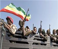 إثيوبيا تناشد الاتحاد الأوروبي «التدخل» لوقف تقدم الجيش السودانى على الحدود