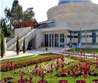 متحف الطفل يحتفل بـ«المانجروف»