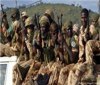 """نيجيريا تستعين بمقاتلين روس لمواجهة """"بوكوحرام"""""""