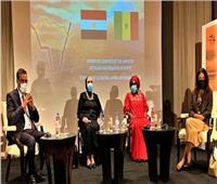نيفين جامع: مصر تشارك بإماكنياتها وخبراتها لدفع عجلة العمل الإفريقي المشترك