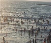 استمرار الإقبال علي شواطئ راس البر   صور
