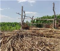 إزالة حالتي تعدي على الأرض الزراعية بمركز الشهداء