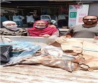 ضبط كميات من الأسماك غير الصالحة للاستهلاك الأدمي بالمنوفية