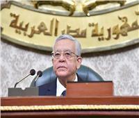 رئيس البرلمان: أنا صعيدي وأحب جميع المصريين