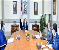 الرئيس السيسي يوجه بمواصلة جهود تطوير شركات قطاع الأعمال لدعم الصناعة الوطنية