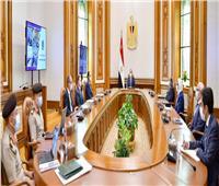 الرئيس السيسي يتابع الموقف التنفيذي لإنشاء الشبكة الوطنية للطوارئ والسلامة