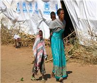 الأمم المتحدة: المساعدات الغذائية بتيجراي ستنفد هذا الأسبوع