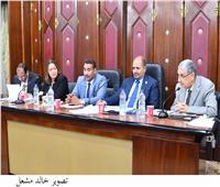 رؤساء شركتي القناة والاسكندرية أمام «طاقة النواب» للرد على طلبات إحاطة حول مشكلات الكهرباء