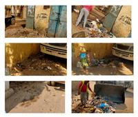 رفع كفاءة النظافة في منشأة القناطر بالجيزة