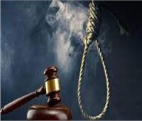 الإعدام لسيدة بالدقهلية قتلت زوجها بسم الفئران للزواج بشقيقه