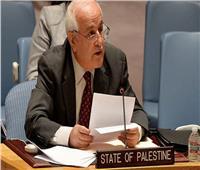سفير فلسطين بالأمم المتحدة: الاحتلال هو الخطر المحدق