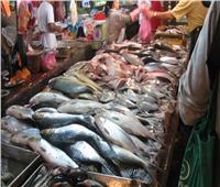 أسعار الأسماك في سوق العبور اليوم ٢٩يوليو