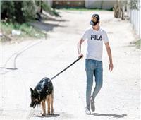 فتاة بريطانية ترفع دعوة قضائية بعنوان «ارحم كلبك»