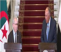 وزير الخارجية: الرئيس السيسى تلقى رسالة مودة وإخاء من نظيره الجزائرى