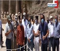 استعدادات مكثفة لافتتاح طريق الكباش الفرعوني بالأقصر | فيديو