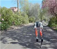 تدريب روبوت على الجري لمسافة طويلةدون استخدام كاميرات | فيديو