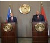 شكري: مصر تخطط لتحصين ٨٠ مليون مواطن بلقاح كورونا
