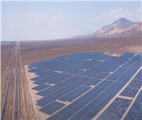 وول ستريت: الفحم الصيني وراء ازدهار الطاقة الشمسية في أمريكا