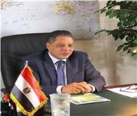 «هشام فريد» يكتب: حكمة «الرئيس» وقوة مصر