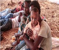«أطفالٌ في خطر».. أحدث الانتقادات الموجهة لإثيوبيا بسبب تيجراي