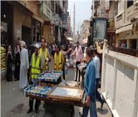 رفع 250 حالة إشغال طريق مخالفة بمركزي دمنهور وأبوحمص| صور
