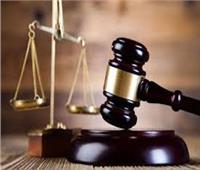اليوم.. إعادة إجراءات محاكمة 20 متهما بـ«فض رابعة»