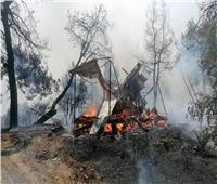 اندلاع 800 حريق في إيطاليا خلال الـ 24 ساعة الماضية