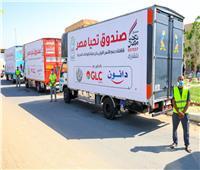 توجيهات الرئيس السيسي.. «تحيا مصر» يطلق قافلة حماية اجتماعية في الواحات البحرية  صور