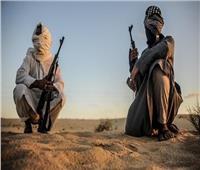 """مصر تطالب المجتمع الدولي بتعريف مُوحد لـ""""الإرهاب"""""""