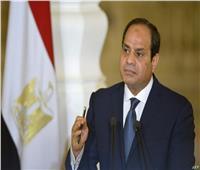 خبراء:مصر واجهت الإرهاب بمنظومة بناء متكاملة وغير مسبوقة
