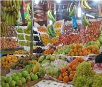 ثبات أسعار الفاكهة في سوق العبور.. 3 أغسطس