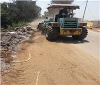 رفع 120 طن قمامة من قرية الهياتم بـ«المحلة»