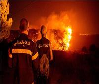 فقدان السيطرة عن حريق ناجم عن سقوط قذيفة صاروخية من لبنان|فيديو