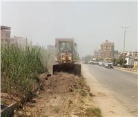 رفع 100 طن أتربة وحشائش من قرى المحلة