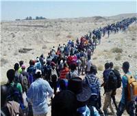 220 ألف شخص هربوا من الحرب في إقليمي أمهرة وعفار