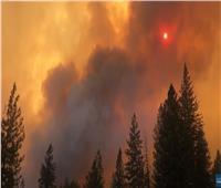اندلاع حريق ضخم في غابات بأمريكا  فيديو