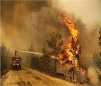إخلاء إجباري بسبب حرائق الغابات في شمال كاليفورنيا