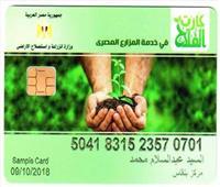 كيفية الحصول على بطاقة الحيازة الإلكترونية