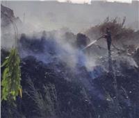 السيطرة على حريق شب في مخلفات زراعية بنجع حمادي