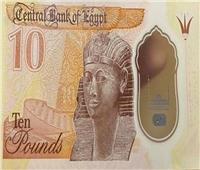 خبير اقتصادي: تحويل العملة للبلاستيكية مرآة للاقتصاد المصري