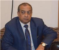 «الجمارك» توافق على مد قرار التفويضات للمستخلصين لحين صدور «لائحة القانون»
