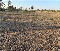يحدث في الفيوم .. إهمال المسئولين «يدفن زراعات الفلاحين بالحيا»